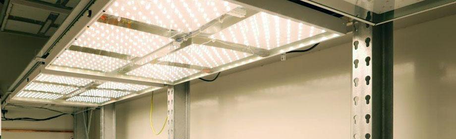 New: True-Daylight-LED